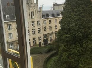 Luxueus duplex appartement in de groene oase van de historische Sint-Geertruiabdij. Op wandelafstand van het commercieel centrum van Leuven en gemakke