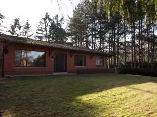 Zeer rustig gelegen Huis in bungalowstijl, living,keuken,hal badkamer en 3 slaapkamers op zelfde niveau. Zeer grote garage en kelders, aan achterzijde