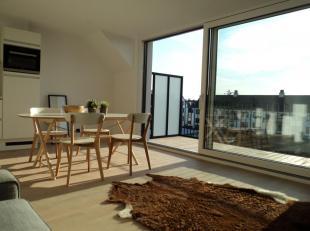 Dit perfect gerenoveerd ruime DUPLEX appartement bevindt zich op de tweede en derde verdieping van een kleine residentie van 3 units en beschikt over