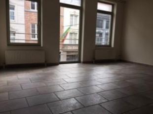 Appartement gelegen in het centrum van Tongeren, Living met veel licht inval, ingebouwde keuken, 1 grote slaapkamer, 1 berging, badkamer met ligbad, e